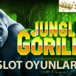 jungle gorilla slot oyunları kazandırıyor